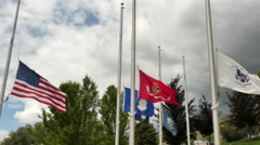 American flag & service flags in cemetery at half-staff against dark gray sky Stock Footage