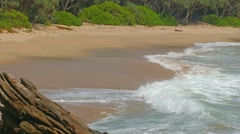 Sea waves on tropical beach and coconut palms 4k Stock Footage
