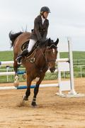 Young horsewoman is landing brown horse. Vertically - stock photo