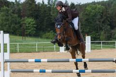 Horsewoman jump on an obstacle Stock Photos