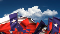 Waving Texas State Flags Stock Footage