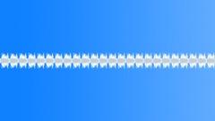 Alarm loops 08 Sound Effect