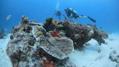 Scuba divers explore coral reef Stock Footage