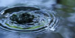 Raindrops Falling into Water 4K Stock Footage