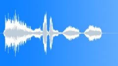 Stock Sound Effects of complete celebration birds 05