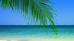Bold Blue Horizon over a Tropical Beach Stock Footage