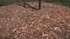 California drought and mulching trees Stock Footage