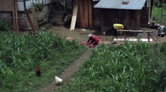 Village life in the Himalayas, carpenter, chickens, long shot Stock Footage