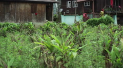 Village in the Himalayan mountains, long shot, Shallow DOF Stock Footage