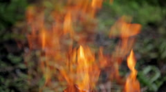 Flames of fire Stock Footage