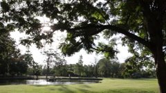 Dolly:Sunset in park with sunlight trees and green grass footage Stock Footage