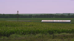 Static shot of corn field and buildings. Stock Footage