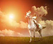 Young horsewoman riding on white horse, outdoors view Stock Photos