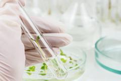 Biosciences Stock Photos