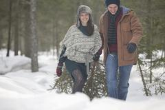 Happy couple dragging fresh Christmas tree in snowy woods Stock Photos
