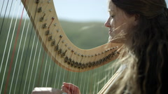 Outdoor Orchestra - Harp - stock footage