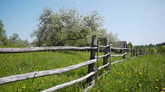 Rural landscape, blooming apple garden, blue sky and wooden fence Stock Footage