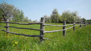 Stock Video Footage of Rural landscape, blooming apple garden, blue sky and wooden fence