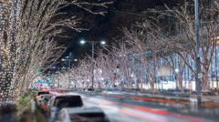 Time lapse of holiday traffic, shoppers, and decorations in Omotesando, Tokyo Stock Footage