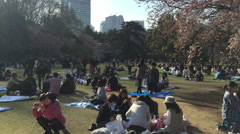 Panning view of people enjoying Shinjuku park in Tokyo Stock Footage