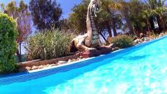 Aqua dragon Stock Footage