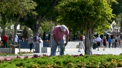 4K Portugal Madeira Funchal municipal gardener worker working waterfront park Stock Footage