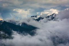 View of the snowy Olympic Mountains and low clouds from Hurricane Ridge, in O - stock photo