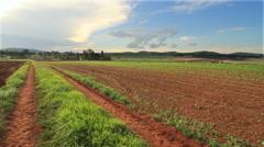 Organic Farmland Stock Footage