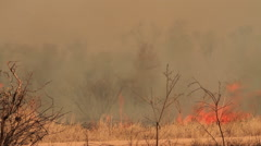 Wide-shot of ashes and smoke as a result of a large bush fire in a wilderness Stock Footage