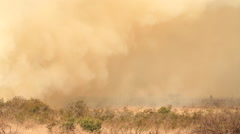 Wide-shot of a bird flying in the distant smoke filled air as a result of a Stock Footage