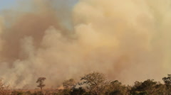 Slow Zoom in to dust and smoke as a result of a large bush fire in a wilderness - stock footage
