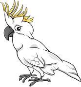 Stock Illustration of cockatoo parrot cartoon illustration