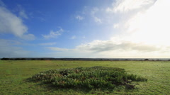 Time-lapse over grassland. - stock footage