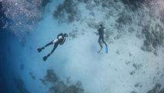 Scuba divers from above swimming over sandy coral reef Stock Footage