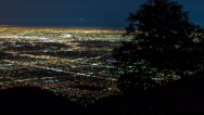 Stock Video Footage of Los Angeles Night Lights City Wide with Tree