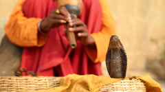 Snake being charmed by music played by man at street in Varanasi. - stock footage