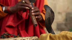 Snake being charmed by music played by man at street in Varanasi. Stock Footage