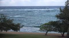 Kapaa Beach on the island of Kauai Hawaii Stock Footage