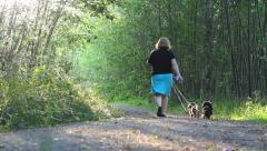 Woman Walking Two Daschunds Down Pretty Forest Path Stock Footage