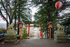 Torii at chureito pagoda - stock photo