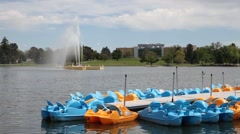 Paddle Boats in the Park Stock Footage
