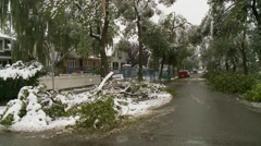 Snowstorm disaster, snow damaged tree sequence 2 Stock Footage
