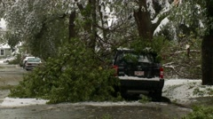 Snowstorm disaster, snow damaged tree, branches on street Stock Footage