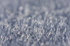 Morning Frost Crystals - stock photo