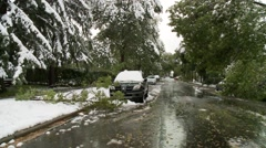 Snowstorm disaster, snow damaged tree, wide street shot  Stock Footage