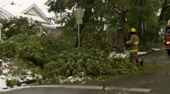 Snowstorm disaster, snow damaged tree fire fighters chainsawing with truck Stock Footage