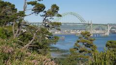 Yaquina Bay Bridge and wildflowers, Newport, Oregon (pan) Stock Footage