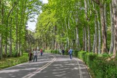 Tehran park Zafaranieh Kuvituskuvat