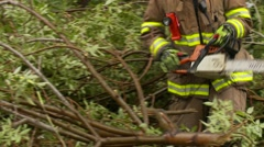 Snowstorm disaster, snow damaged tree fire fighters, medium shot Stock Footage