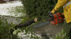 Snowstorm disaster, snow damaged trees, firefighters chainsawing Stock Footage